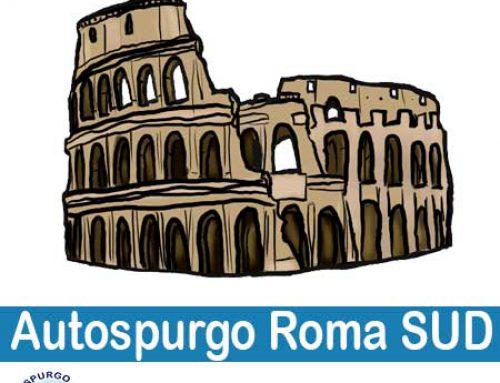 Autospurgo Roma Sud