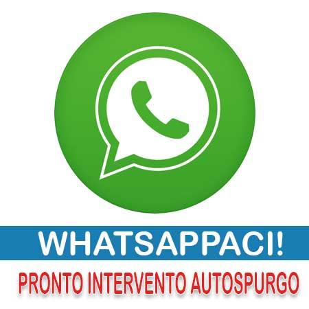 Whatsapp Autospurgo Roma Mandaci un messaggio!!